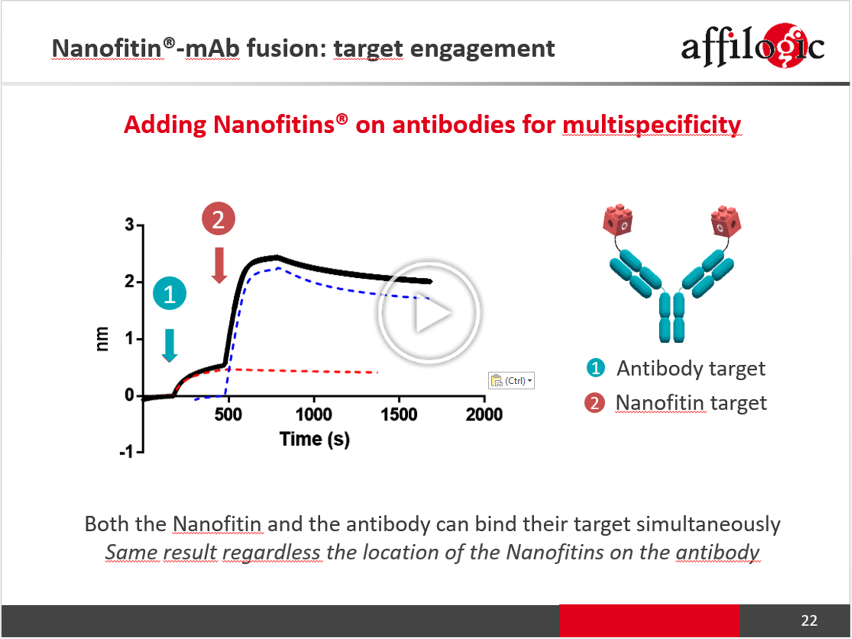 Nanofitin-Antibody fusion as a novel multispecific platform: providing extra specificities while maintaining developability